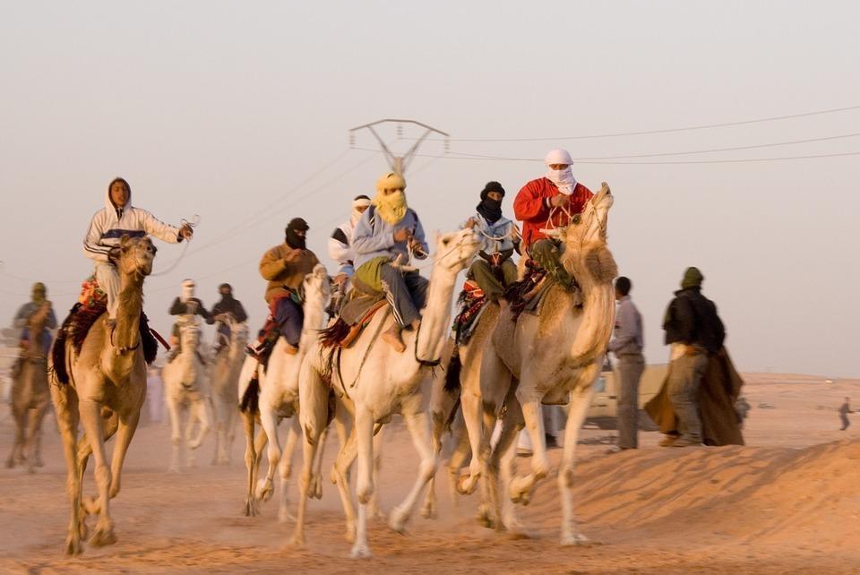 camel 836152 960 720 - ALGIERIA: wyprawa na Festiwal Sebeiba