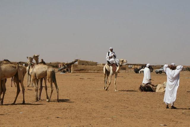 IMG 1380 - SUDAN PÓŁNOCNY: Zrozumieć Potęgę Nilu