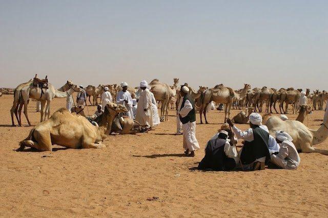 ALGIERIA: wyprawa na Festiwal Sebeiba