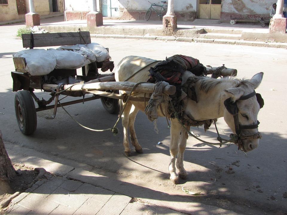 asmara 91225 960 720 - SUDAN PÓŁNOCNY: Zrozumieć Potęgę Nilu