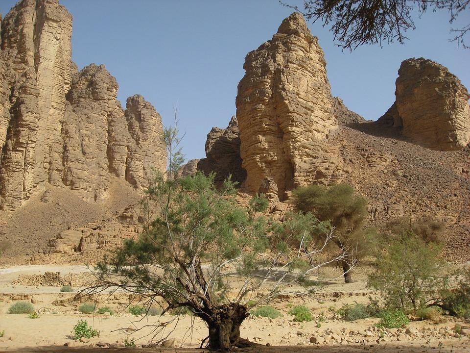 algeria 644442 960 720 - ALGIERIA: antyczna północ i prehistoryczne południe - wycieczki do Algierii