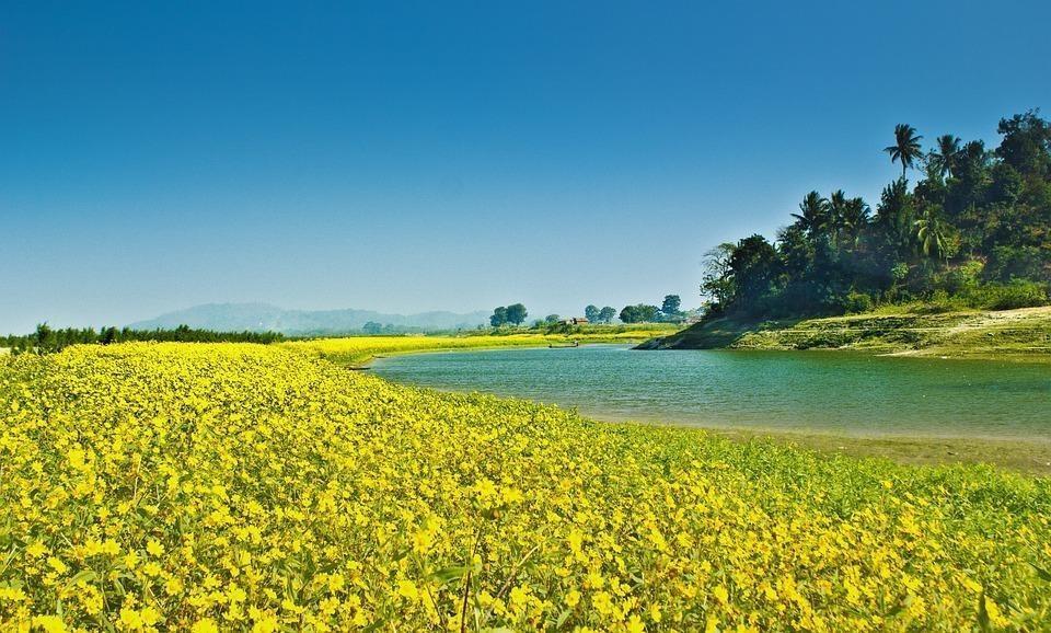farming 169927 960 720 - INDIE: Assam i Nagaland - Plemiona Naga i Festiwal Hornbill