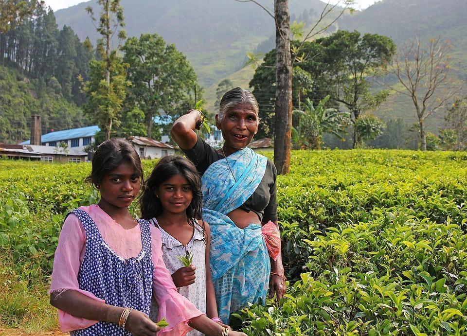 Sri Lanka wycieczka