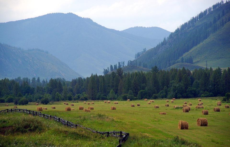 mountain altai 2107455 960 720 - ROSJA: Krasnojarsk, Norylsk i Rezerwat Putorana – rejs po Jeniseju