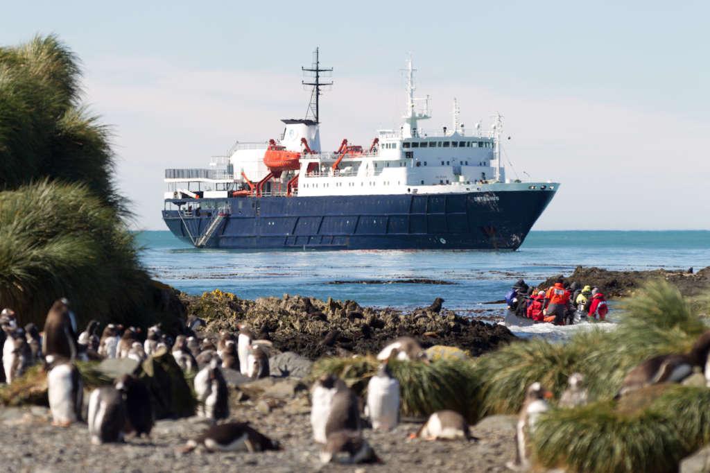 ortelius at prion island south georgia february rolf stange oceanwide expeditions 1024x682 - ANTARKTYDA – PODRÓŻ PRZEZ TRZY KONTYNENTY: Rejs z Nowej Zelandii do Argentyny