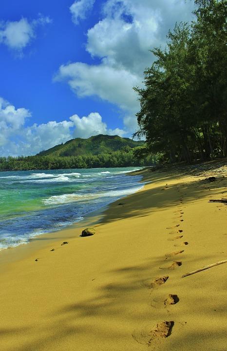 Wycieczka na Hawaje