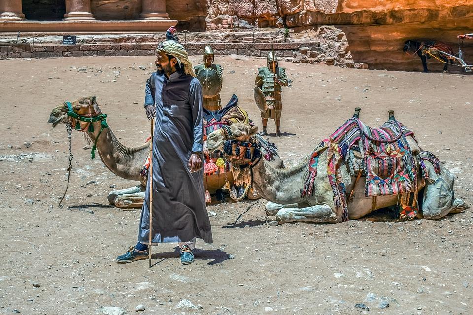 camels 4363348 960 720 - JORDANIA: zwiedzanie + wypoczynek nad Morzem Martwym i Morzem Czerwonym