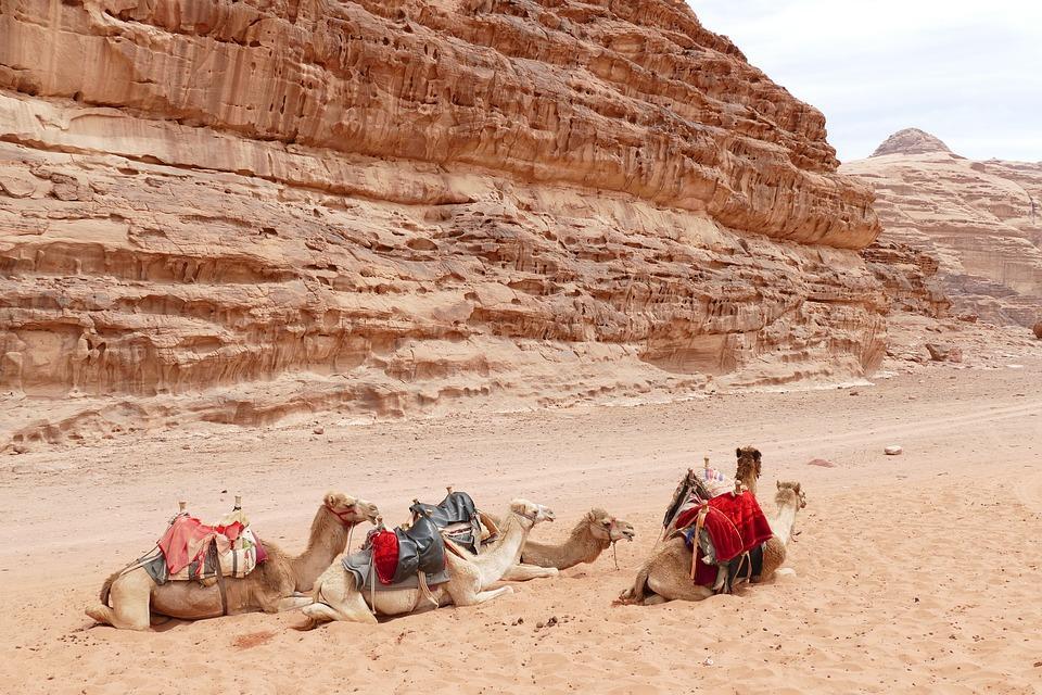 jordan 4134851 960 720 - JORDANIA: zwiedzanie + wypoczynek nad Morzem Martwym i Morzem Czerwonym