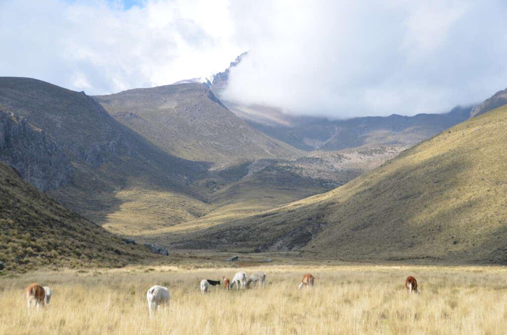 Wycieczka do Ekwadoru