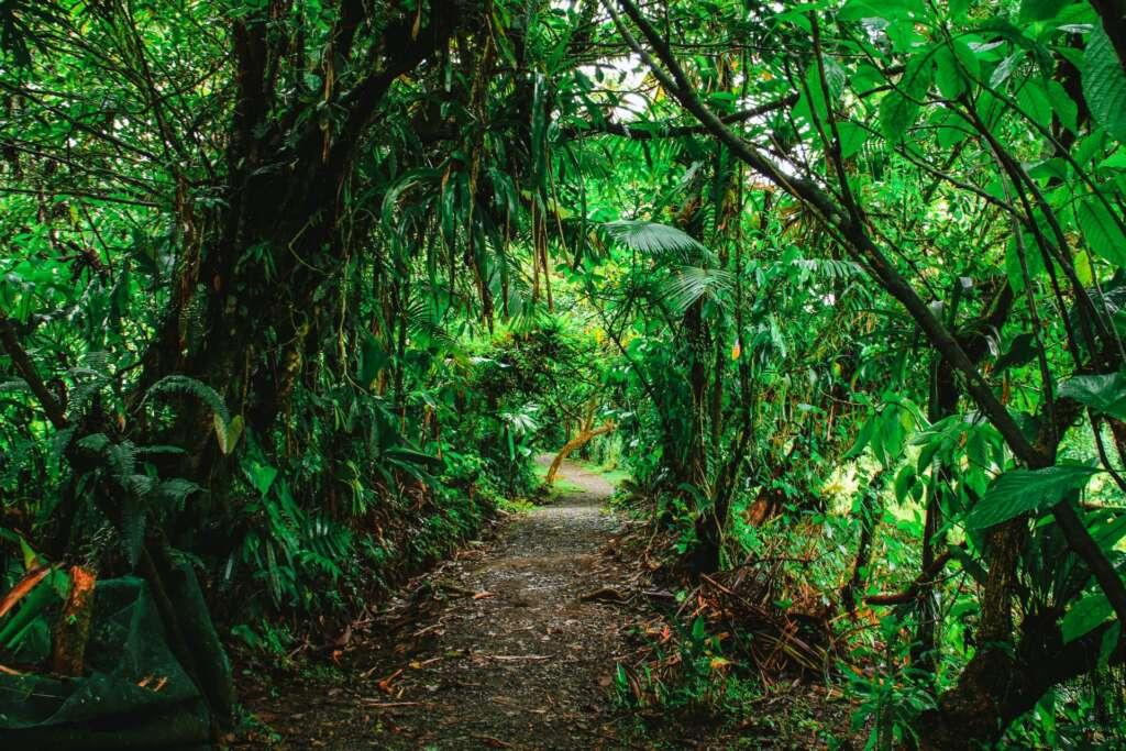 Wycieczka do Kostaryki