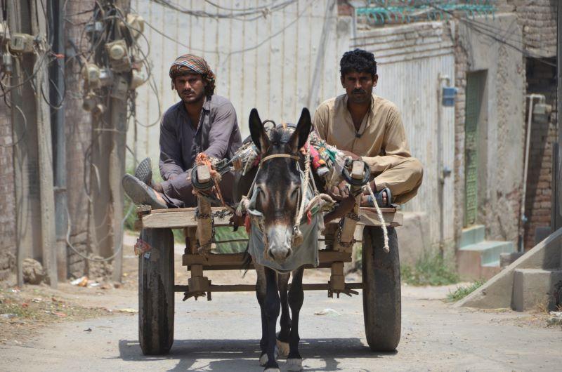 64 1 - Pakistan - fotorelacja Bogusława Łachmańskiego